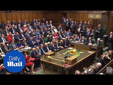 MPs rapturously applaud officers who arrested Jo Cox's killer - Daily Mail