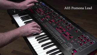 Roland JD-XA Synthesizer Ver.1.50 Preset Sound Examples: A03 Pomona Lead