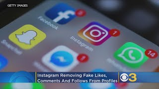 Instagram Cracking Down On Fake Likes, Comments, And Follows