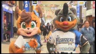 北海道に球団が誕生して節目の10年目を迎えた北海道日本ハムファイター...