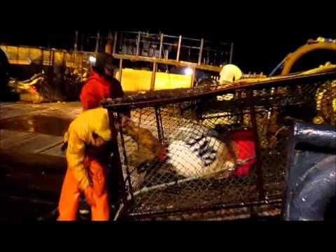 Baranof Crab fishing Bering Sea