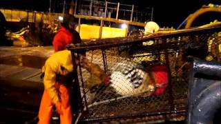 Baranof Crab fishing Bering Sea