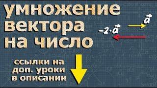 УМНОЖЕНИЕ ВЕКТОРА НА ЧИСЛО 10 11 класс Атанасян 344 стереометрия