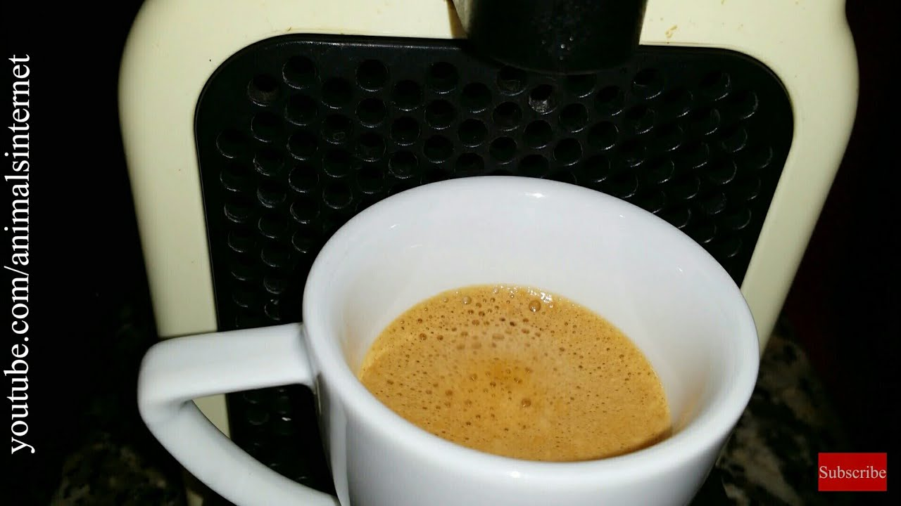 How to use a Nespresso Delonghi (& Krups) Inissia coffee ...