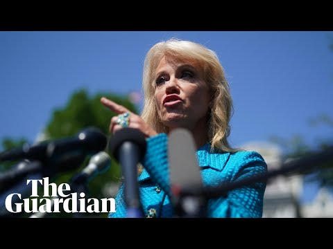 Trump aide Kellyanne Conway asks reporter: 'What's your ethnicity?'