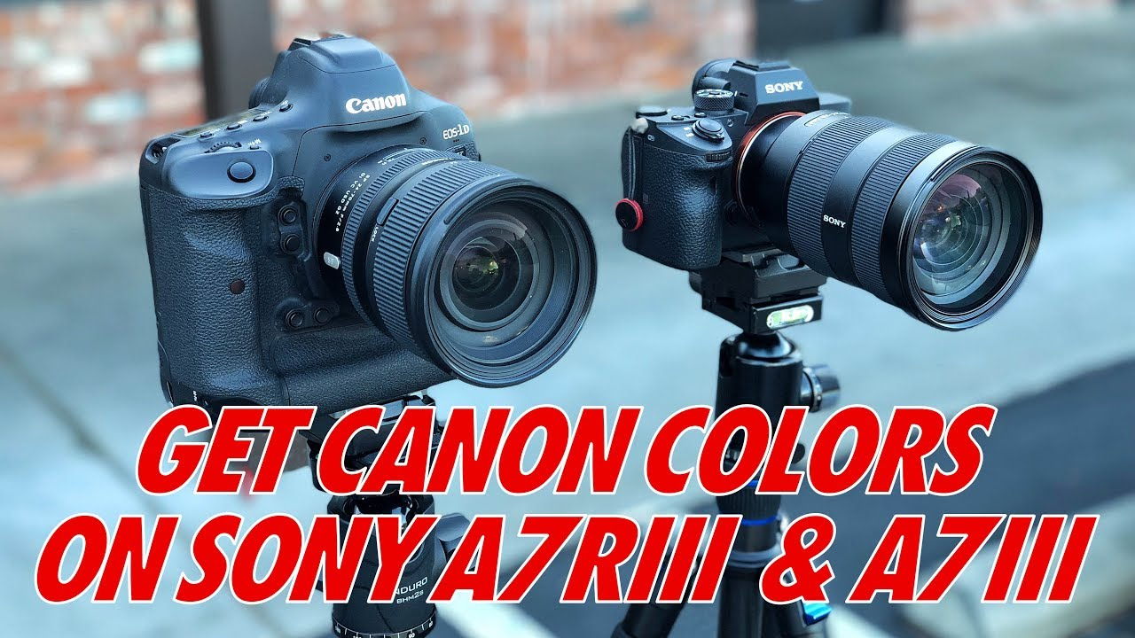 Get CANON COLOR On The Sony A7RIII A7III - Match To The 1DX Mark II - Best  Sony Picture Profiles