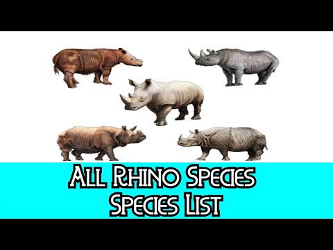 All Rhino Species - Species List