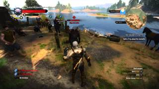 Witcher 3 70 level fight like Boss