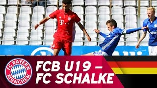 FC Bayern München - FC Schalke 04 1:3 | Highlights U19-Bundesliga Halbfinale
