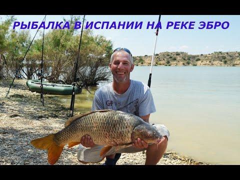 Испания рыбалка река эбро