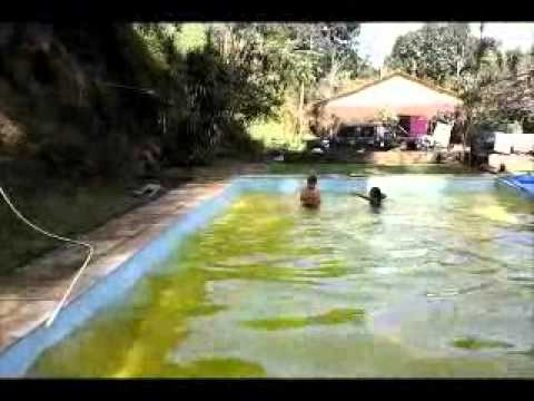 Piscina De Gelatina Youtube