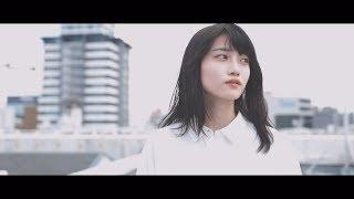 クアイフ 『桜通り』Lyric Video
