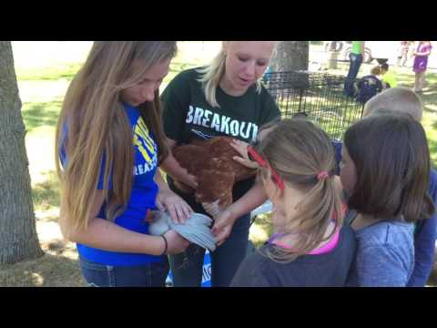 Agriculture education: Project RED with Allegan County Farm Bureau & Hopkins FFA