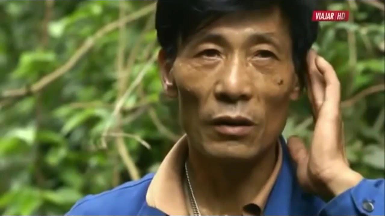 DOCUMENTAL LA CHINA SECRETA,CULTURA Y BELLEZA  2 VIDEO COMPLETO (http://adfoc.us/27479571917919)