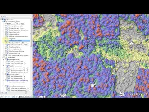 3D Forest Inventory - Tree Heights, DBH and Volume