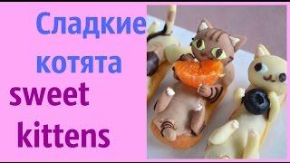 Cладкие котики. sweet #cats ИДЕИ ДЛЯ ОФОРМЛЕНИЯ БЛЮД . Оригинальный десерт