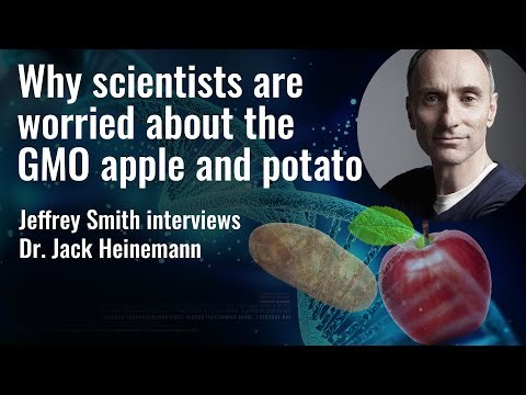 Why scientists are worried about the GMO apple and potato