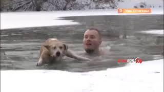 Журналист нырнул в ледяную воду за тонущей собакой — трогательное видео