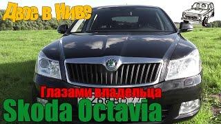 Б/у Skoda Oсtavia (Шкода Октавия) A5 FL 1.8 TSI (обзор)
