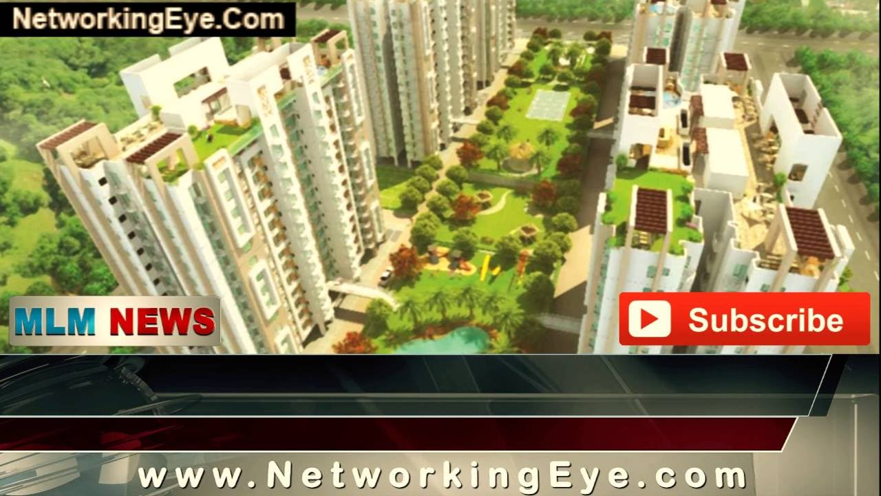 Investors of sai group companies demands for investigation: mlm hindi news