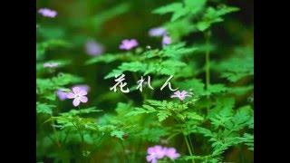 岡垣町 村下孝蔵ライブ(1992.10.18) 1992.10.31にFMラジオで放送 ニコ動...