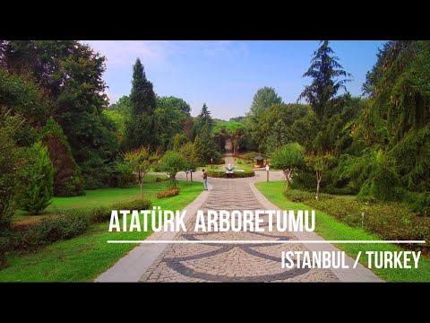 İstanbul'da sonbaharın renkleri Atatürk Arboretumu'nda