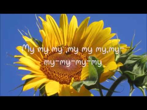 Birdy - Skinny love Lyrics