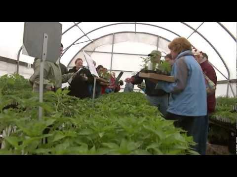 Kentucky Farm Bureau Presents Blugrass & Backroads: Thieneman's Herbs and Perennials