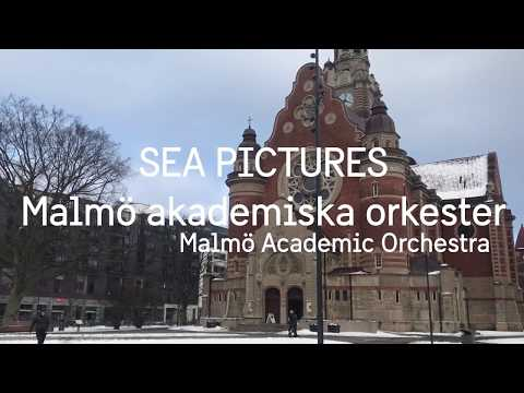 Arts & Culture: Malmö Academic Orchestra