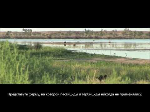 OBE Organic presents Nature's Perfect Farm (Russian)