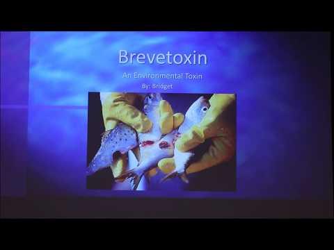 Brevetoxin (Red Tide) (2018)