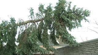 Spuren der Zerstörung nach Wintergewitter in Leeste