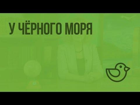 У Черного моря. Видеоурок по окружающему миру 4  класс