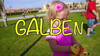 Gaseste fluturii|   Quest | Video for Kids