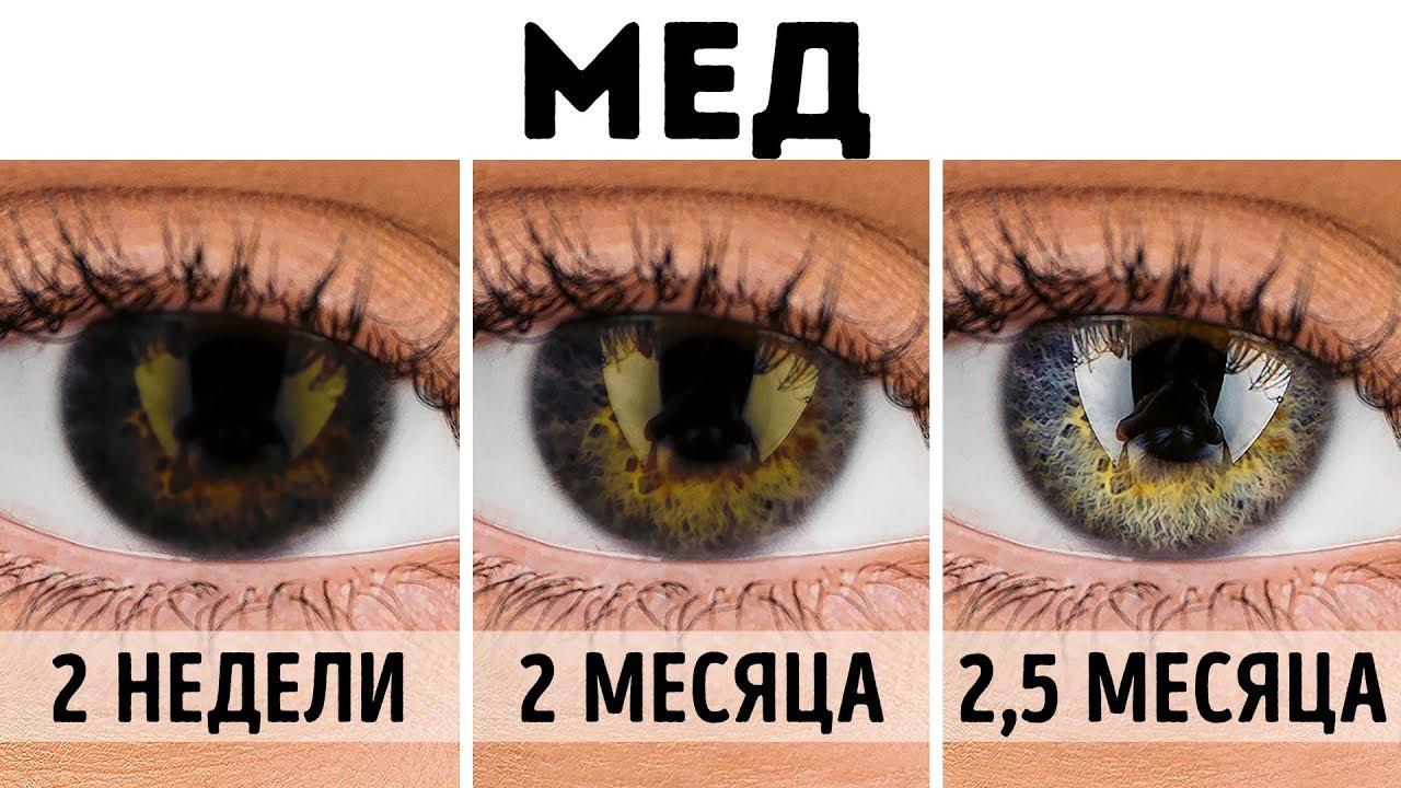 Как выбрать сетчатку глаза