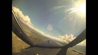 taking flight eagle colorado