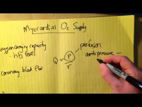 Myocardial Oxygen Supply