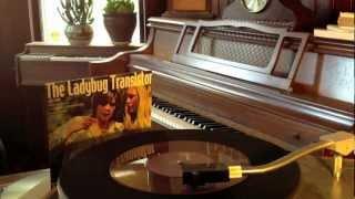 The Ladybug Transistor - Brighton Bound (single version)