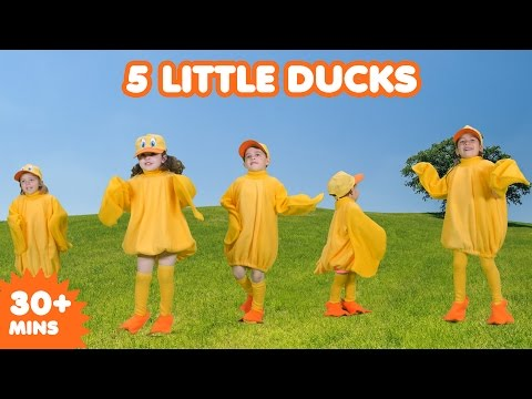 5 Little Ducks | Nursery Rhymes | Kids Songs