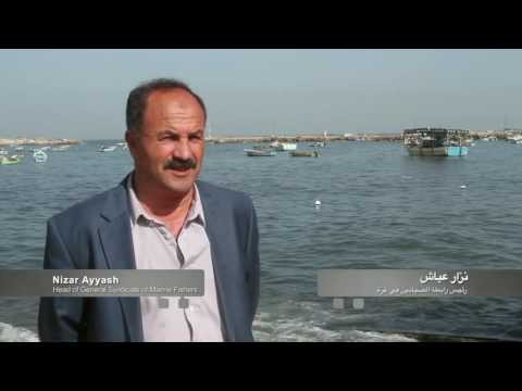 Gaza fishers gain new skills and greater hope for future employment