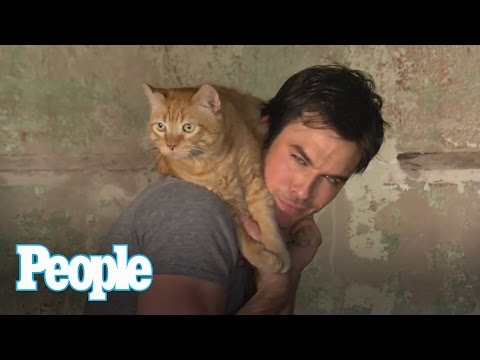 Ian Somerhalder Proves Cat People Are the Hottest People | People