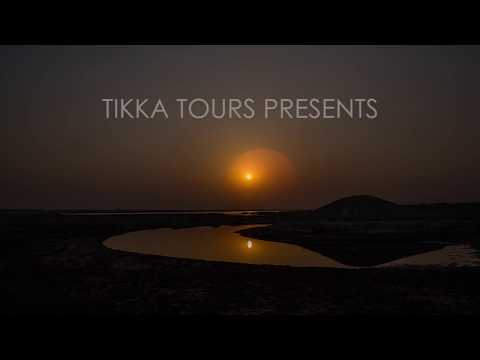 Experience India's Wildlife -  Tikka Tours travel specialist