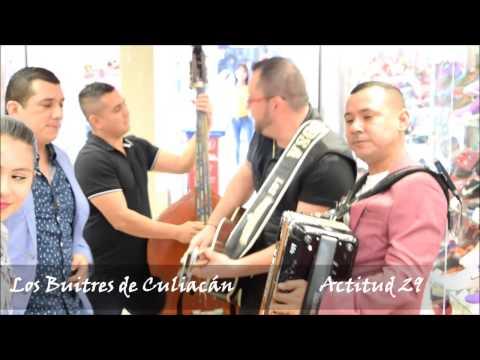 Los Buitres dando serenata