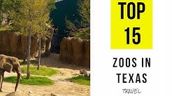 TOP 15. Best Zoos in Texas