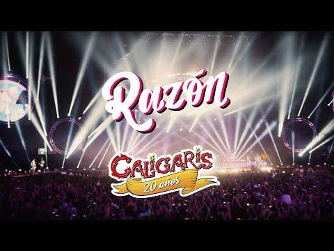 Los Caligaris - Razón (DVD