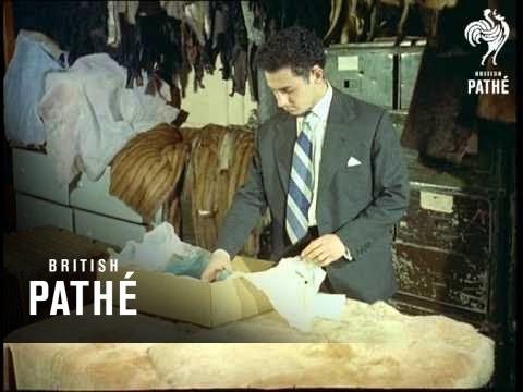 9d44b33077f Fur Museum Aka Fur Repairs (1957) - YouTube