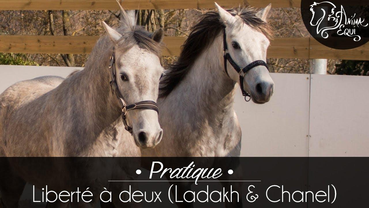 f8b02a8669015 PRATIQUE • Ladakh   Chanel   Liberté à deux - YouTube