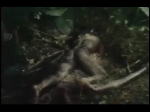 Cannibalism in Africa documentary - Tribes documentary