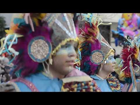 Desfile Del Carnaval De Badajoz.Los Lorolos.23-2-2020.