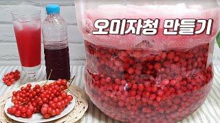 오미자청만들기 새콤달콤 건강음료 오미자에이드 최고~! …